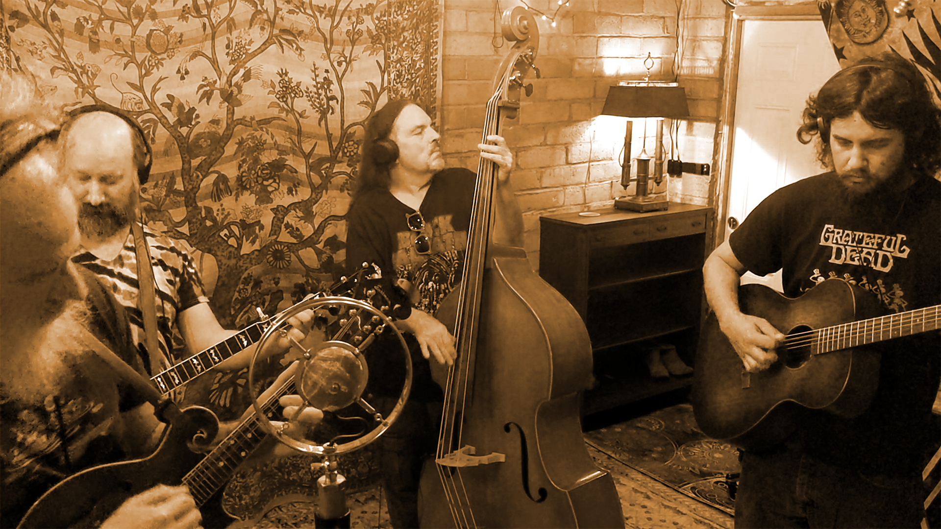 Honey Buckets Bluegrass Band