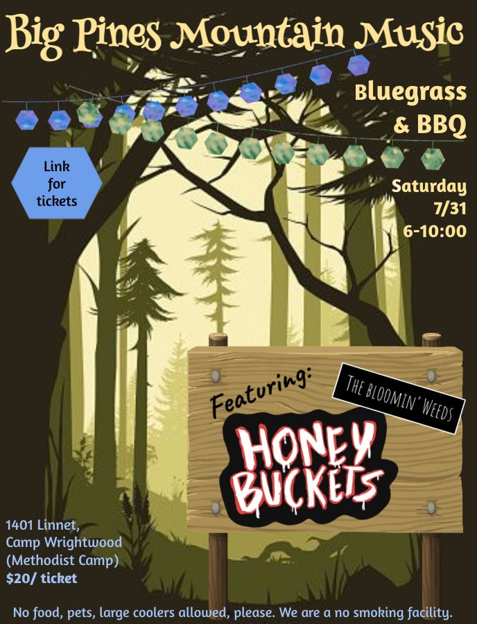 Big Pines Mountain Music, Wrightwood - Honey Buckets & The Bloomin' Weeds